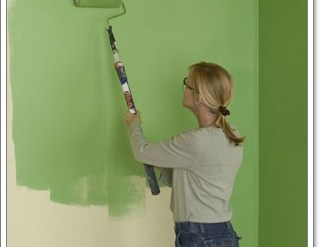 DIY How to paint your wall 20 - paint