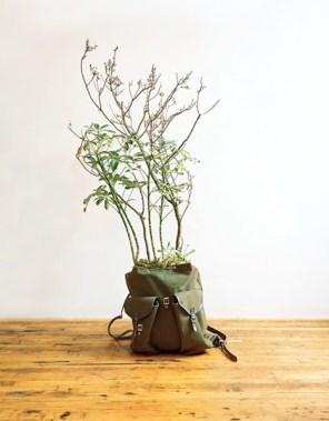 %name Plant Apparel..มาปลูกต้นไม้ในของใช้ใกล้ตัวกัน