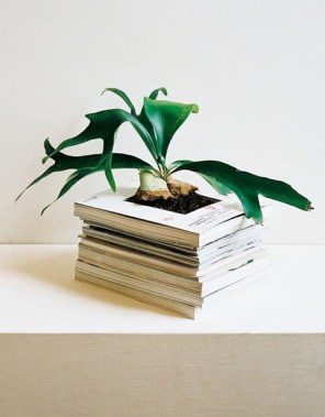 planting-pot-in-book