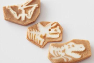 Dinosoap 4 -