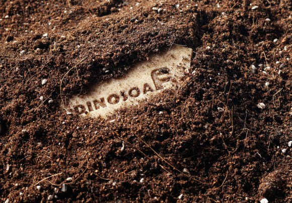 Dinosoap 14 -