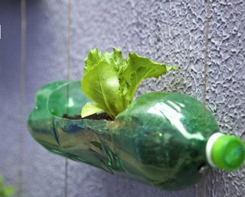 สวนแนวตั้ง ทำเองก็ได้ ~ สวนแขวนจากขวดพลาสติกใช้แล้ว 14 - 100 Share+
