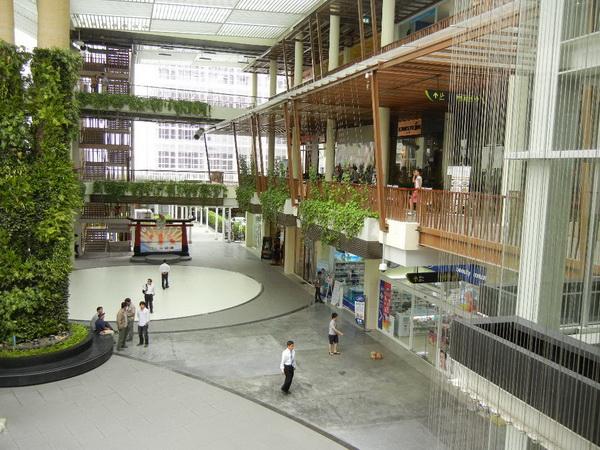 The Nine Neighborhood Center ที่ช้อป ที่กิน แวดล้อมด้วยสีเขียว 14 - Shopping