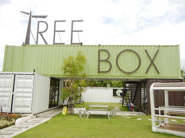 DSCN5961 resize Tree Box..กล่องต้นไม้ที่มาจากการ reuse ตู้คอนเทนเนอร์