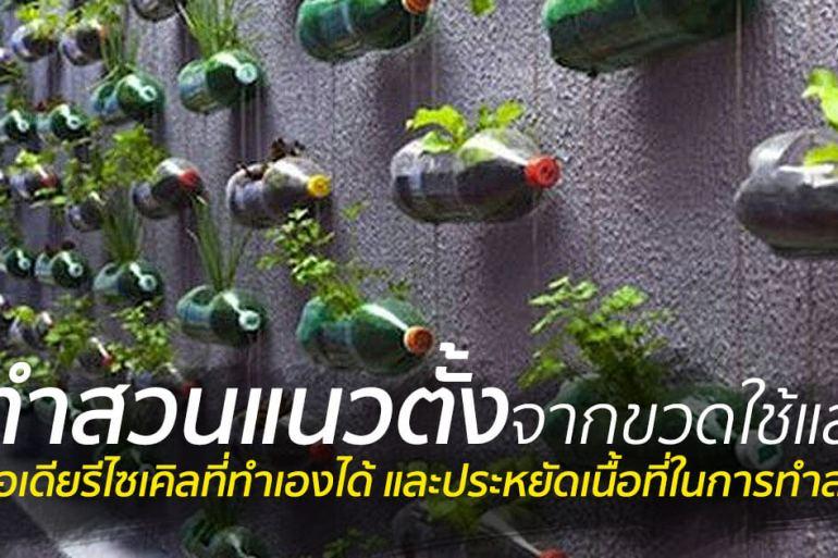 สวนแนวตั้ง ทำเองก็ได้ ~ สวนแขวนจากขวดพลาสติกใช้แล้ว 19 - 500 Share+