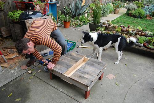 5362562398 a05e03597a D.I.Y.โต๊ะปลูกต้นไม้..จากลังไม้เก่า