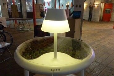 Moss table 27 - Lighting