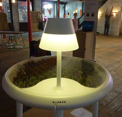 Moss table 19 - Lighting