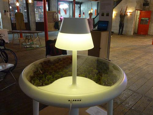 Moss table 14 - Lighting
