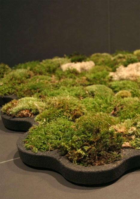 """moss carpet3 """"สวนเล็กๆ ในพรมเช็ดเท้า"""" ประจำห้องน้ำของคุณ"""