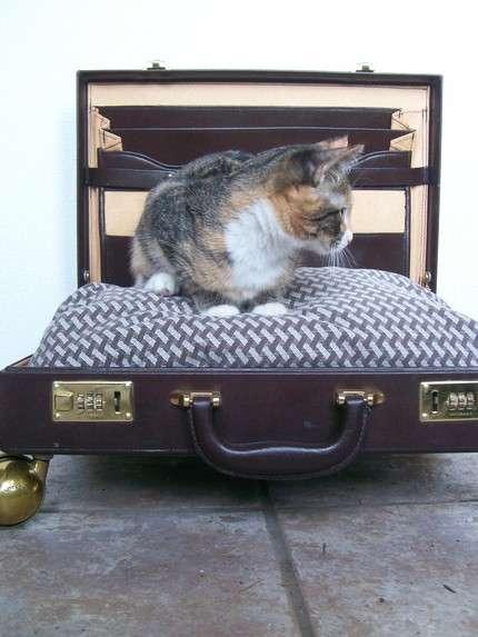 62347 2 468 Pets Bed to Go..เตียงนอนสัตว์เลี้ยงพร้อมเคลื่อนย้าย