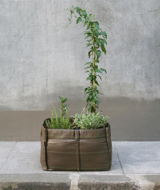 bac12 Bag for plants