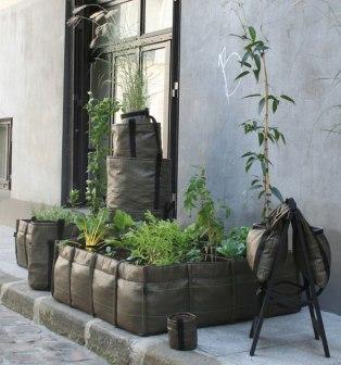 %name Bag for plants