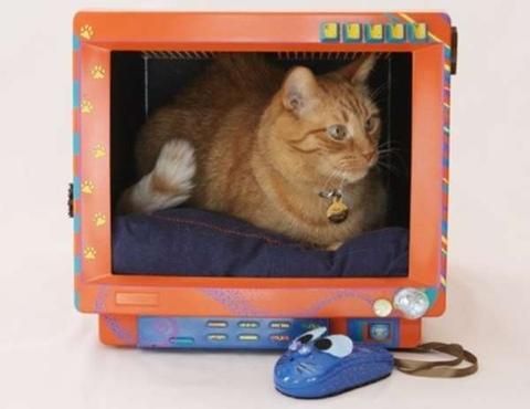 Cat bed...เตียงน้องเหมียวจากจอคอมพิวเตอร์เก่า(รุ่นโบราณ) 32 - รีไซเคิล