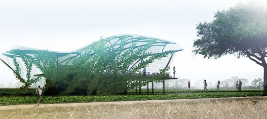 Urban farm architectkidd 1 550x246 URBAN FARM ความยั่งยืนเพื่อชีวิตที่ดีกว่าสำหรับมนุษย์ในอนาคต สวนเกษตร