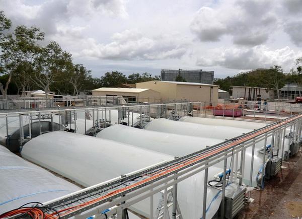 สาหร่าย2 resize พลังงานจากสาหร่าย..อนาคตพลังงานของไทย