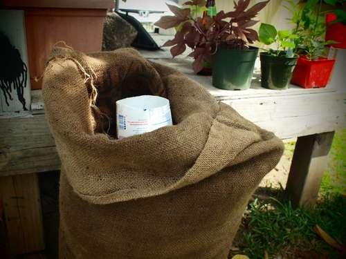 25550509 1928411 Garden Sack สวนกระสอบ...ปลูกผักสวนครัว แบบไม่ต้องการพื้นที่