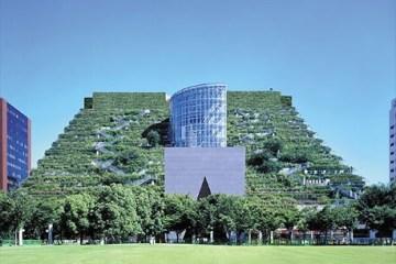 ตึกเขียวในฟูกูโอกะ
