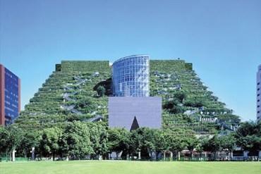 ตึกเขียวในฟูกูโอกะ 18 - green building