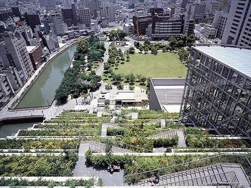 25550623 094039 ตึกเขียวในฟูกูโอกะ