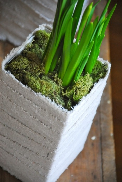 25550625 175908 DIYทำกระถางปลูกต้นไม้ จากกล่องนมใช้แล้ว