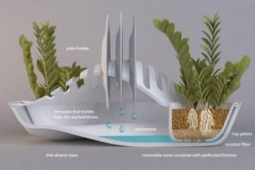 ที่พักจาน + กระถางต้นไม้.. eco-friendlyอีกแล้วงานนี้ 12 - dish rack