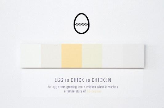 egg 900 533x350 Shades of Change สีบอกอะไรได้มากกว่าที่คิด!!