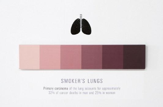 lungs 900 533x350 Shades of Change สีบอกอะไรได้มากกว่าที่คิด!!