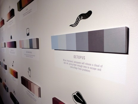 Shades of Change สีบอกอะไรได้มากกว่าที่คิด!! 25 - color