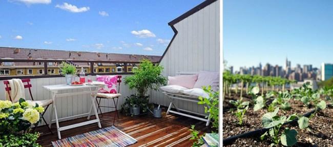 2 650x287 Green on Rooftop Restaurant แนวคิดเรื่อง สวนครัวบนตึก ระฟ้า