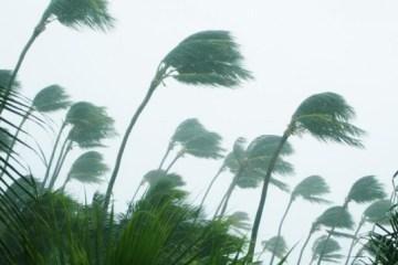 การศึกษาของMIT บอกว่าทุกอุณหภูมิที่เพิ่มขึ้น 1 องศาคือฝนที่ตกหนักขึ้น 10% ในแถบศูนย์สูตร 15 -
