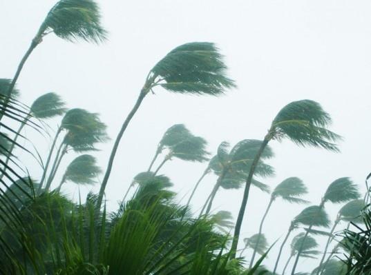 25550922 101940 การศึกษาของMIT บอกว่าทุกอุณหภูมิที่เพิ่มขึ้น 1 องศาคือฝนที่ตกหนักขึ้น 10% ในแถบศูนย์สูตร