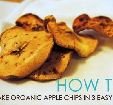 มาทำ Apple Chips ด้วย3 ขั้นตอนสุดง่ายกัน 16 - DIY