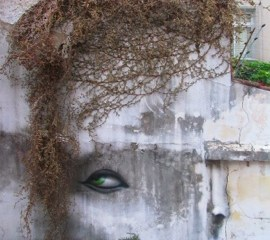 The Distorted Street Faces of Andre Muniz Gonzaga 6 - street art