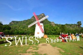 Swiss Sheep Farm (14)