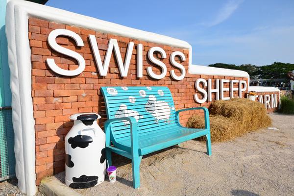 Swiss Sheep Farm..ฟาร์มแกะที่ชะอำ 27 - swiss sheep farm