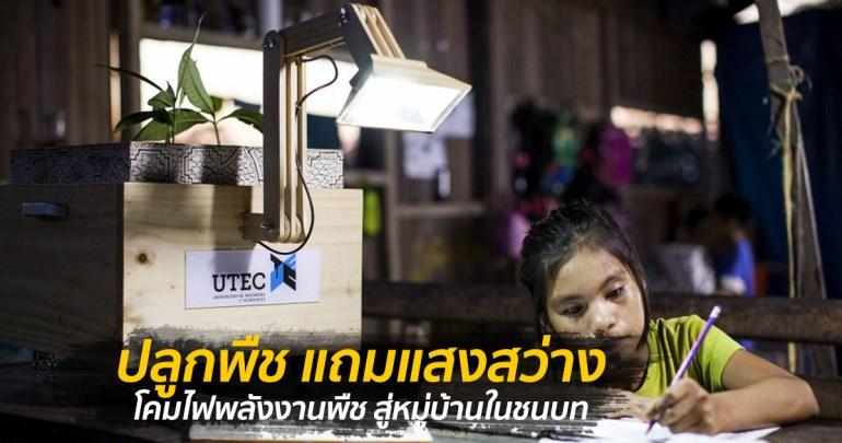 เพียงปลูกพืชก็สว่างได้ โคมไฟพลังงานพืช สู่หมู่บ้านในชนบท 13 - Eco