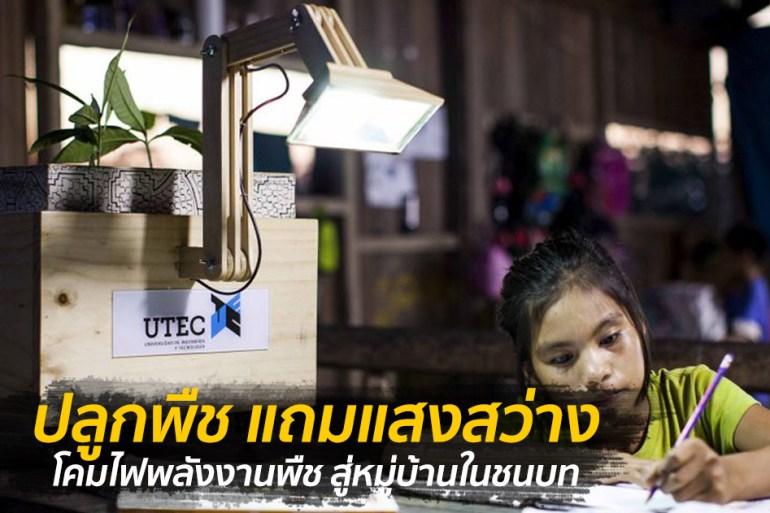 เพียงปลูกพืชก็สว่างได้ โคมไฟพลังงานพืช สู่หมู่บ้านในชนบท 19 - LED
