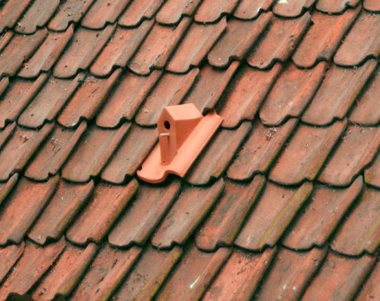 25560105 141826 เปลี่ยนหลังคาบ้าน เป็นบ้านนก ด้วยกระเบื้องมุงหลังคาเซรามิคบ้านนก