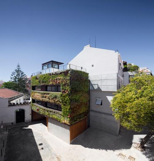 25560120 190637 บ้านที่คลุมด้วยต้นไม้ 4,500 ต้น แบบสวนแนวตั้ง