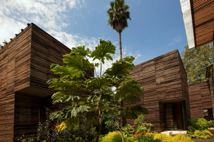 chipicas town houses alejandro sanchez garcia casa chipicas valle de bravo 3 บ้านที่เน้นกลมกลืนกับต้นไม้..เลือกที่จะเพิ่มพื้นที่ในแนวตั้ง เพื่อเก็บต้นไม้ไว้อยู่เป็นเพื่อนกัน