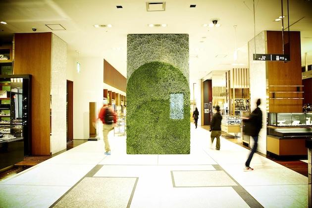 Art of Plants For Isetan Japan Department Store 3 สวนแนวตั้ง ART OF PLANTS ในห้าง ISETAN ที่ญี่ปุ่น