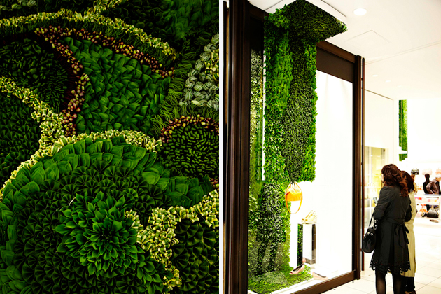 Art of Plants For Isetan Japan Department Store 9 สวนแนวตั้ง ART OF PLANTS ในห้าง ISETAN ที่ญี่ปุ่น