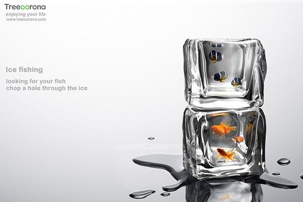 25560413 201254 อ่างปลาในก้อนน้ำแข็ง
