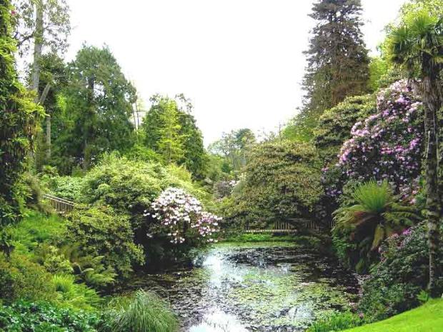 25560430 133737 The Lost Gardens of Heligan...สวนอายุ 400ปี ที่หายไปจากโลกนี้เกือบ 100ปี