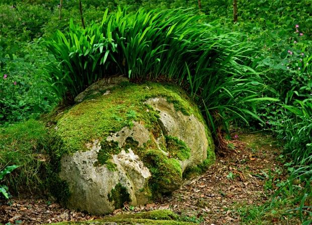 25560430 140135 The Lost Gardens of Heligan...สวนอายุ 400ปี ที่หายไปจากโลกนี้เกือบ 100ปี
