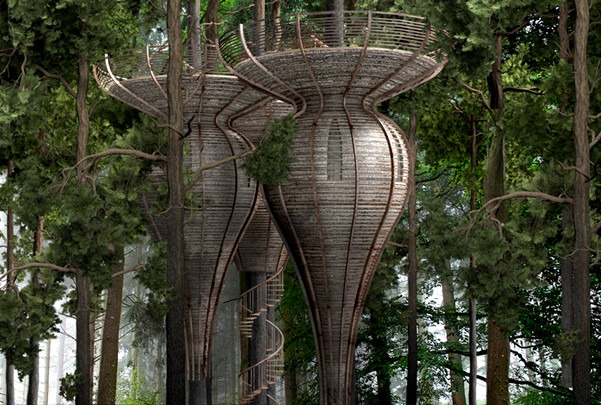 gibbon-ROOST-Treehouse-1