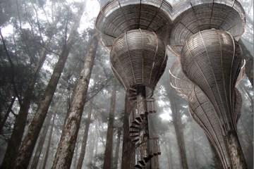 The Roost Treehouse..แบบเดียวกับบ้านเอล์ฟใน Lord of the Rings