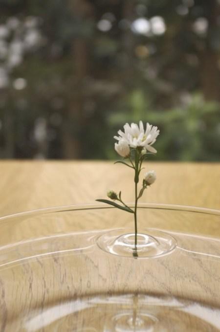 image24 450x678 floating ripple vases แจกันที่มีการเคลื่อนไหวตลอดเวลา