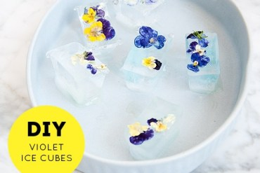 DIY ดอกไม้ในน้ำแข็ง..แค่เห็นก็หายร้อน 30 - DIY